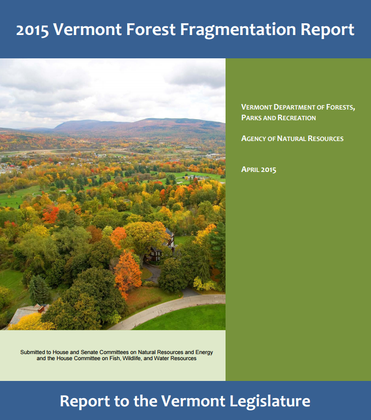 Forest Fragmentation Report