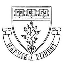 Harvard Forest Logo